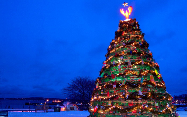 Petition christmas the whol year round for Year round christmas tree