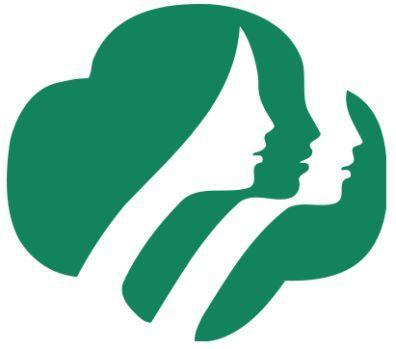 Image result for girl scout bronze project