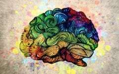 Whitehouse et al. 2021: Meet with Autistic Advocates to discuss diagnosis reduction study