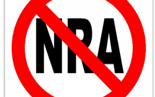 End the NRA's control of our government - TAKE THE PLEDGE