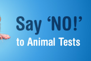 animal testing unethical