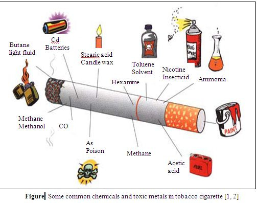 term paper on cigarettes Should cigarettes be banned we can provide you with quality essay, term paper, research paper, dissertation and thesis writing services.