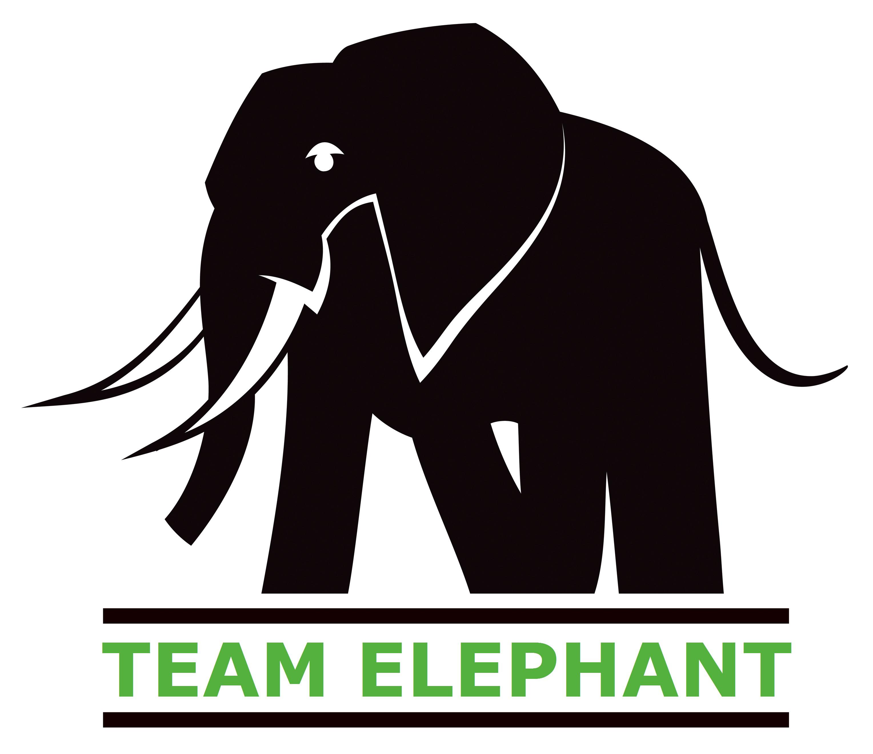 Team Elephant